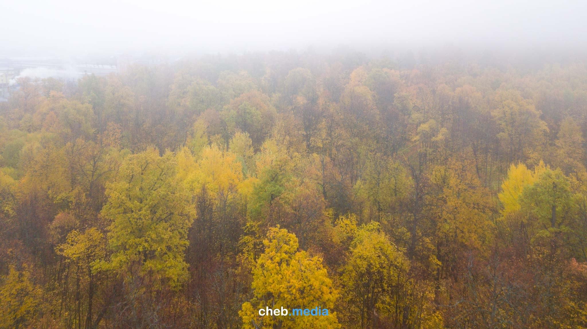 Туманное будущее биатлонного комплекса в Чебоксарах